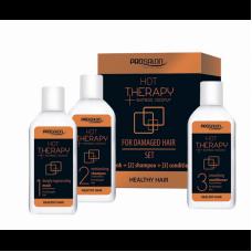 ProSalon Набор Обертывание волос Hot therapy 50 г х 3