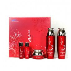 Jigott DAANDANBIT Набор с экстрактом красного женьшеня RED GINSENG 3SET